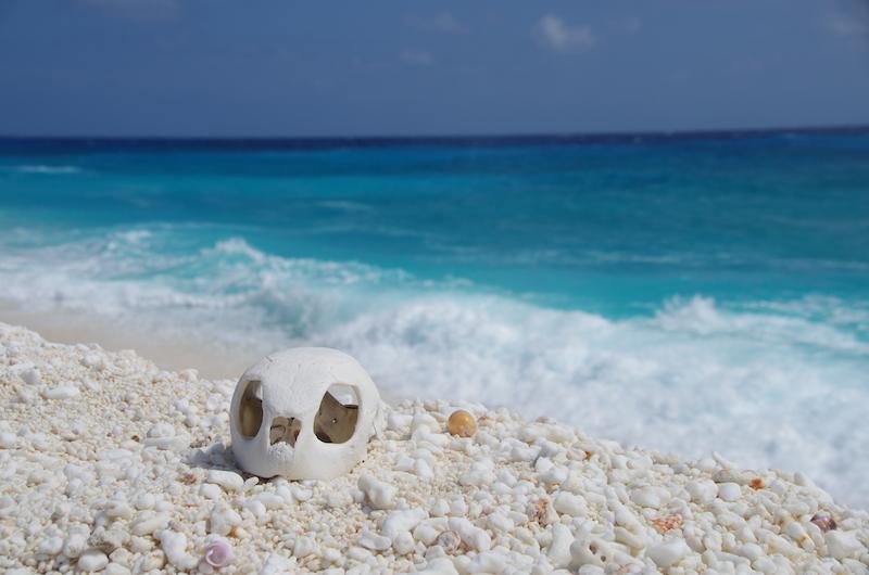 TF1 : Zoom sur l'île Tromelin